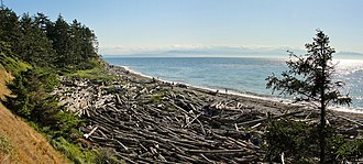 Island County, Washington - Image: Shoreline at Fort Ebey State Park
