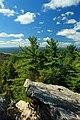 Short Hike (4) (9704345703).jpg