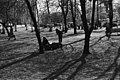 Sibeliuksen puisto - ser040202 - hkm.HKMS000005-km0000nz6d.jpg