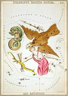 Dessin d'un dauphin, aigle, archer et flèche superposés sur une carte des étoiles médiévale