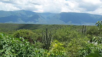 Sierra Madre Oriental - La Independencia%2C Jaumave%2C Tam
