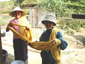 Women in Laos - Two Laotian women and their silk product.