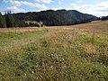 Skalná Alpa WF4.jpg
