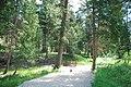 Slate Creek Campground site (5860960878).jpg
