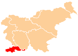 Map of Slovenia highlighting the region location