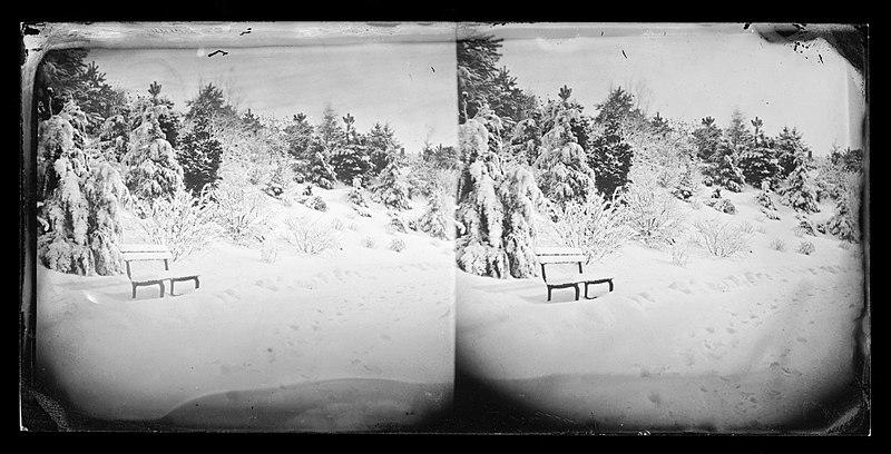 File:Snow Scene, Prospect Park, Brooklyn, ca. 1872-1887. (5832945267).jpg