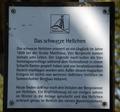 Sommerkahl Schwarzes Hellchen (04).png