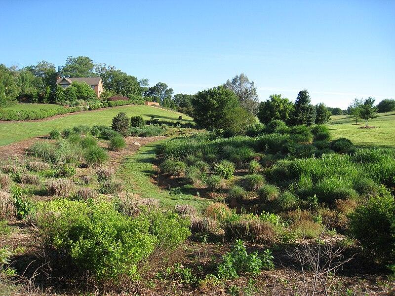 File:South Carolina Botanical Garden - view 1.JPG