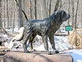 Southmountain dogpark 1.jpg
