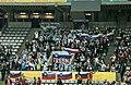 Spain vs Slovenia at 2013 World Handball Championship (5).jpg