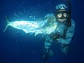 Speafishing2.jpg