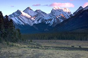Image illustrative de l'article Parc provincial de Spray Valley