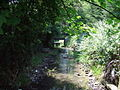 Stansted Brook - geograph.org.uk - 904781.jpg