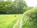 Start of footpath to Northfield Wood - geograph.org.uk - 1324738.jpg