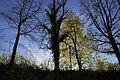 Steckborn - panoramio (48).jpg