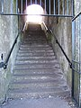 Steps under the Walls - geograph.org.uk - 1229669.jpg