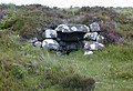 Stone shelter by the Ardlair track - geograph.org.uk - 628659.jpg