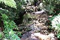 Stream @ Anamudi Shola National Park - panoramio.jpg
