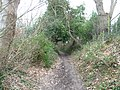 Studland , South West Coastal Path - geograph.org.uk - 1711596.jpg