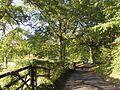 Surrey Countryside, 2007 - panoramio.jpg