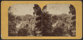 Sylvan Lake, Greenwood, by Deloss Barnum.png