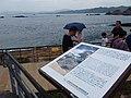 TW 台灣 Taiwan 新台北 New Taipei 萬里區 Wenli District 野柳地質公園 Yehli Geopark August 2019 SSG 114.jpg