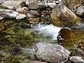 Taiping Forest Park 太平森林公园 (5219152117).jpg