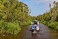 Tanjung Puting National Park - 49813439933.jpg