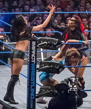 Tag team - Tara (right) tags her partner, Gail Kim, into the match while they isolate a Blossom Twin.