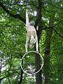 Tarnow Park Strzelecki 4.jpg