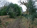 Tenchley's Lane - geograph.org.uk - 1100802.jpg