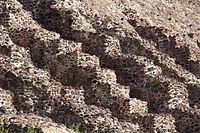 Teotihuacán, Wiki Loves Pyramids 2015 006.jpg