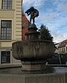 Teterow fountain Hecht.jpg