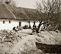 Thatch roof, rock, headscarf, women, chariot Fortepan 92404.jpg