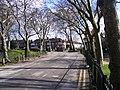The Avenue, Barking Park - geograph.org.uk - 1732219.jpg