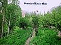 The Beautiful Village khairabad in Hunza Northern area Pakistan.jpg
