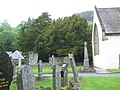 The Fortingall Yew - geograph.org.uk - 1359511.jpg