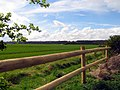 The Landing Strip - geograph.org.uk - 3395.jpg