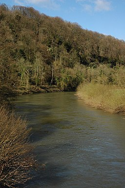 The River Wye at the Biblins - geograph.org.uk - 733954