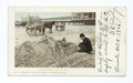 The Sand Man, Atlantic City, N. J (NYPL b12647398-62111).tiff