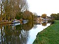The Thames at Lechlade - geograph.org.uk - 605800.jpg