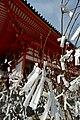 The Wishing Trees of the Heian Jingu (2616916166).jpg