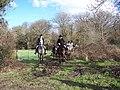 The field near Lower Horncroft - geograph.org.uk - 353955.jpg