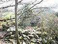 The ruins of Braich-y-dinas cottage - geograph.org.uk - 412821.jpg