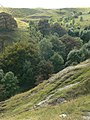The top of Pin Dale - geograph.org.uk - 1485278.jpg
