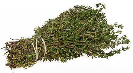 A bundle of thyme (Thymus) Thyme-Bundle.jpg