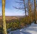 Tiadaghton State Forest Furrows.jpg