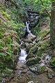 Todtnau - Wasserfallsteig an der oberen Wiese (Hebelweg) Bild 6.jpg