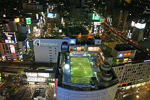 A Futsal pitch in use on the top of a tower block in Tokyo, Japan