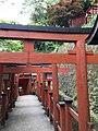 Toriis of Taikodani Inari Shrine 6.jpg